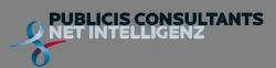 Publicis Consultant Net Intelligenz